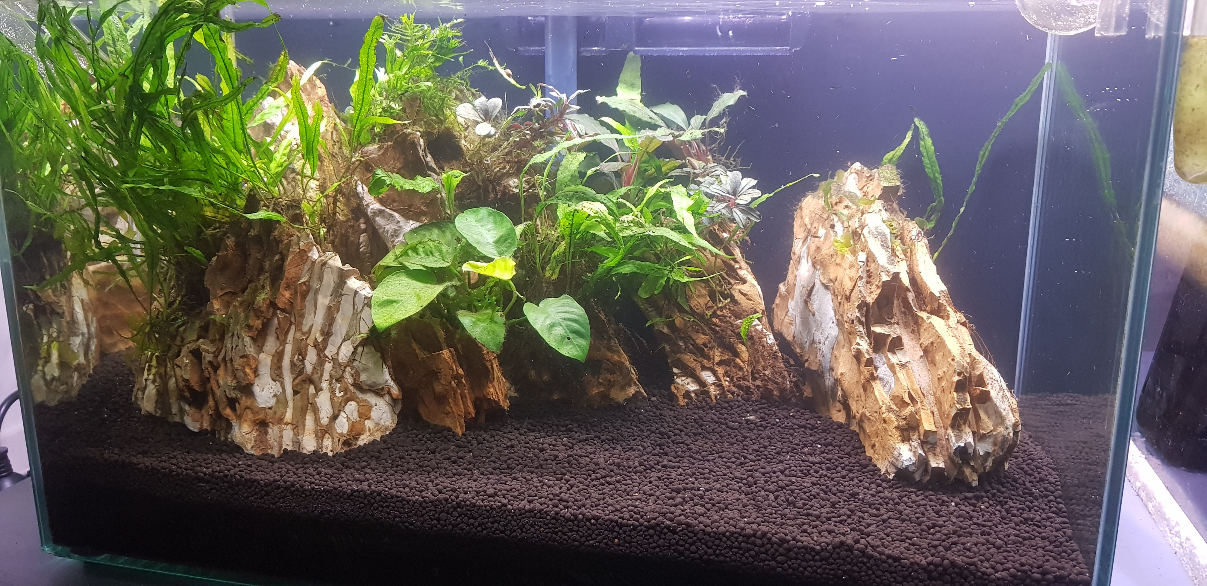 Oliver Knott Substrate Range Review