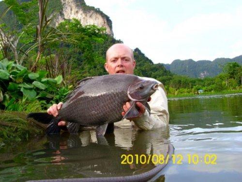 august2011_0055_black_shark_carp_Derek11.jpg