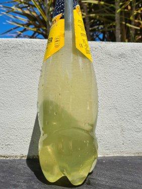 Bottle-02.thumb.jpg.a384e7b72fa016e9d5a05b7eb7673847.jpg