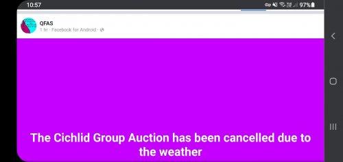 Screenshot_20210417-105733_Chrome.jpg