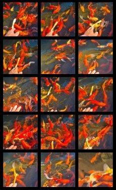 Screenshot_20210807-165841_Gallery.thumb.jpg.0acd82660bfb5390db4d21e6211e42f9.jpg